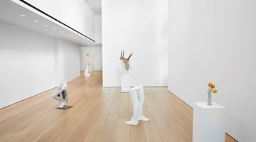 Contemporary art exhibition, Erwin Wurm, Yes Biological at Lehmann Maupin, New York