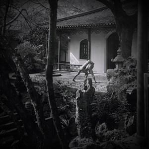 Chinese Garden 05 by Dong Wensheng contemporary artwork