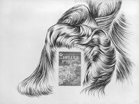 Hair Deluge by Jim Shaw contemporary artwork drawing