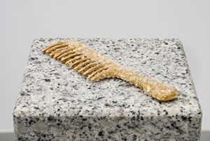 Run a Home, Build a Town, Lead a Revolution: Comb by Grace Schwindt contemporary artwork