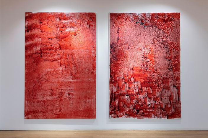 Exhibition view: AdelAbdessemed, Unlock解锁, Tang Contemporary, Hong Kong (23 March–22 April 2019). Courtesy Tang Contemporary.
