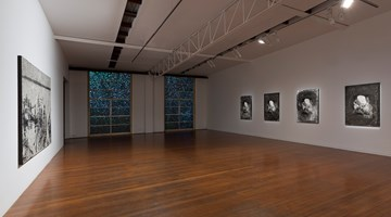 Contemporary art exhibition, Daniel Boyd, Rainbow Serpent at Roslyn Oxley9 Gallery, Sydney