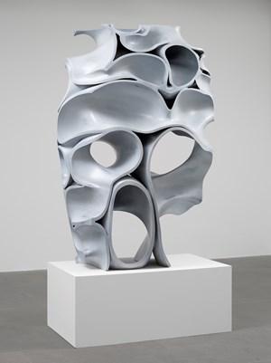 Skull by Tony Cragg contemporary artwork
