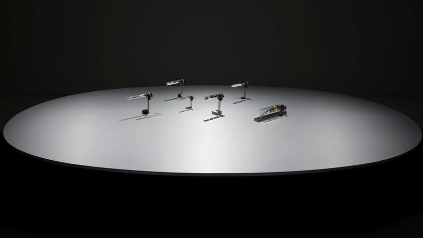 Exhibition view:Yukio Fujimoto Sound Album, ShugoArts, Online Only (1–31 August 2020). Courtesy ShugoArts.