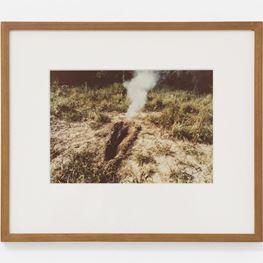 Ana Mendieta contemporary artist