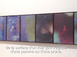 Jitish Kallat, The Infinite Episode, Galerie Daniel Templon, Paris