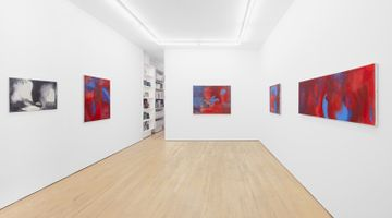 Contemporary art exhibition, Julia Dubsky, M/Modesty at Amanda Wilkinson Gallery, London