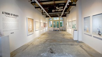 Contemporary art exhibition, Dawn NG, A Thing of Beauty at Chan + Hori Contemporary, Singapore