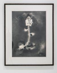 Black Flower #7 by Nils Karsten contemporary artwork painting
