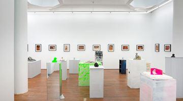 Contemporary art exhibition, Dan Arps, Fiona Clark, Dan Arps & Fiona Clark at Michael Lett, Auckland