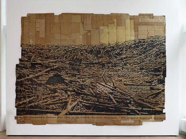I Am Nature: Champion International Clearcut; West Flank of the Cabinet Mountain Wilderness by Andrea Bowers contemporary artwork