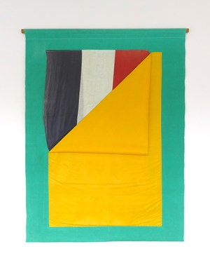 Flag Pocket by Don Driver contemporary artwork