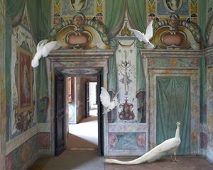 Immaculate Conception, Villa D'Este by Karen Knorr contemporary artwork