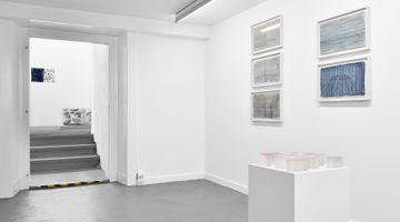 Contemporary art exhibition, Catherine Bolle, Eaux Nomades at Fabienne Levy, Lausanne, Switzerland