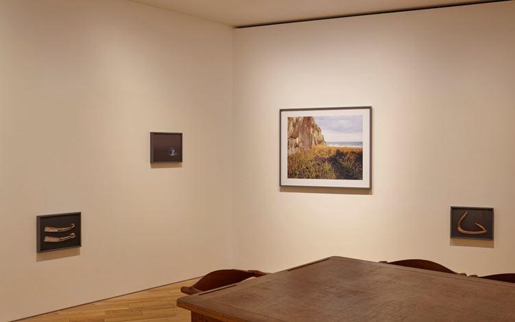 "Nao Tsuda ""Grassland Tears"", Exhibition view at Taka Ishii Gallery Photography / Film, Feb 20 – Mar 26, 2016 Photo: Kenji Takahashi."