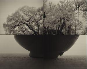 Jindai_SAKURA (C883) by Keiichi Ito contemporary artwork