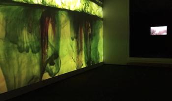 Vincent Ward at Trish Clark Gallery, Auckland