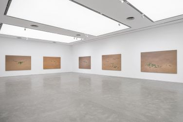 Exhibition view: Yan Bing, Suddenly, Everything Became Clear, ShanghART, Shanghai (9 September–24 October 2021). Courtesy ShanghART.