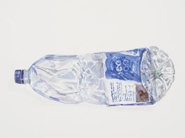 Plastic bottle peril: Gavin Turk's environmental crusade marches on in new show inspired by Extinction Rebellion