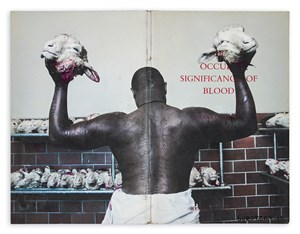 The Occult Significance of Blood (or Abattoir at the Voorberg Prison) by Mikhael Subotzky contemporary artwork