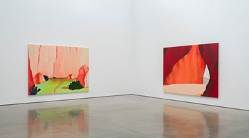 Contemporary art exhibition, Dan Colen, High Noon at Gagosian, Beverly Hills