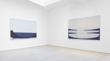 Contemporary art exhibition, Suzanne Caporael, Suzanne Caporael at Miles McEnery Gallery, New York