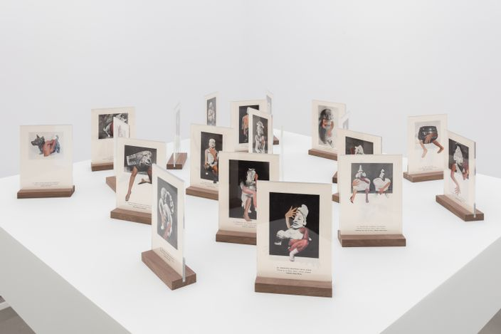 Exhibition view: Felipe Baeza,Unruly Suspension,Maureen Paley, London, (19 June–18 July 2021).© Felipe Baeza. Courtesy Maureen Paley, London.
