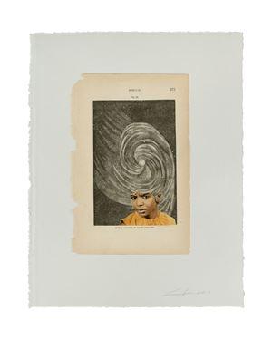 Nebulae Fig. 85 by Lorna Simpson contemporary artwork