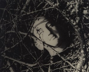 Untitled (Head Among Twigs 2) by Lionel Wendt contemporary artwork