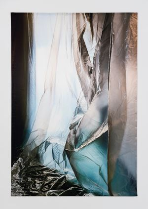 Untitled (3508) by Elisa Sighicelli contemporary artwork
