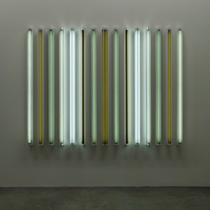 Mint Condition by Robert Irwin contemporary artwork