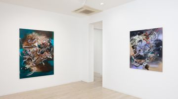 Contemporary art exhibition, Grace Wright, Making it all seem real at Gallery 9, Sydney