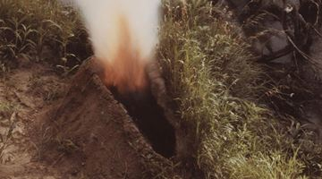 Contemporary art exhibition, Ana Mendieta, Carolee Schneemann, Irrigation Veins: Ana Mendieta & Carolee Schneemann Selected Works 1966 - 1983 at Galerie Lelong & Co. New York, Online Only