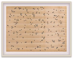 Flies by Ed Ruscha contemporary artwork