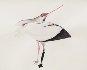 Stork by Grace Schwindt contemporary artwork