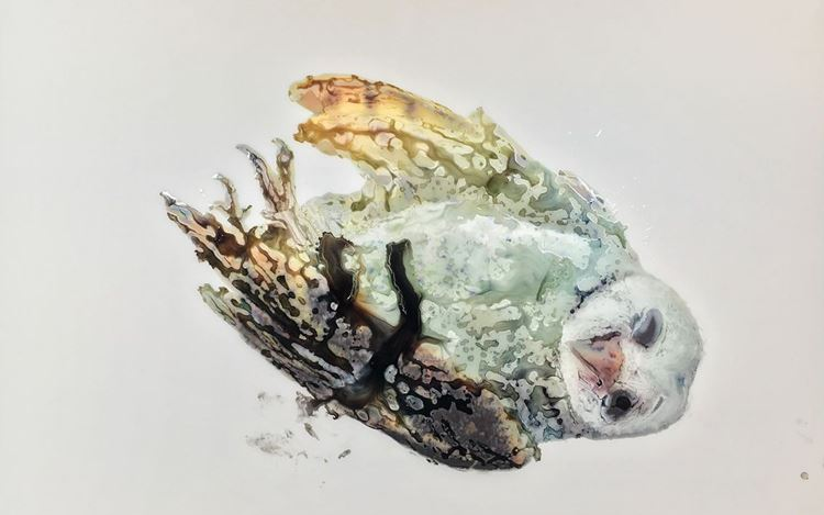 Ida Applebroog, Owl (2018) (detail). Ultrachrome ink and gel on mylar. 83.8 x 111.8 cm.© Ida Applebroog. Courtesy Hauser & Wirth. Photo: Emily Poole.