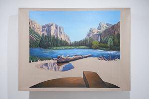 Coyote by Gabriela Bettini contemporary artwork