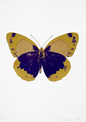 The Souls II - Imperial Purple / Oriental Gold / Hazy Gold by Damien Hirst contemporary artwork