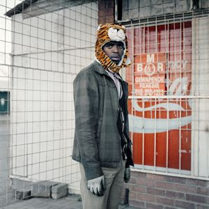 Tiger by Thabiso Sekgala contemporary artwork