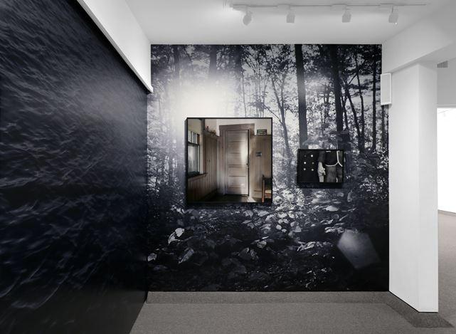Exhibition view: Shellburne Thurber,Phantom Limb, Krakow Witkin Gallery, Boston (21 September–2 November 2019). Courtesy Krakow Witkin Gallery.