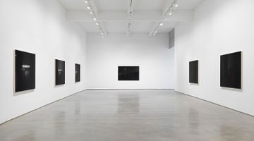 Contemporary art exhibition, Louise Lawler, LIGHTS OFF, AFTER HOURS, IN THE DARK at Metro Pictures, New York, USA