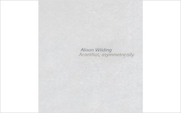 Acanthus, asymmetrically