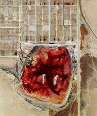 Coronado Feeders, Dalhart, Texas (from Feedlots) by Mishka Henner contemporary artwork photography