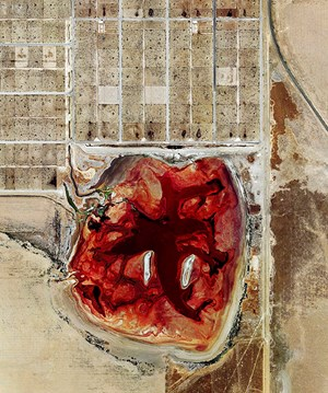 Coronado Feeders, Dalhart, Texas (from Feedlots) by Mishka Henner contemporary artwork