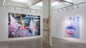 Contemporary art exhibition, Marilyn Minter, Solo Exhibition at Lehmann Maupin, Hong Kong