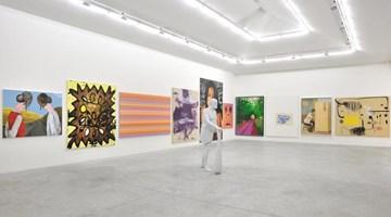 Contemporary art exhibition, Group exhibition, The Shell (Landscapes, Portraits & Shapes) a show by Eric Troncy at Almine Rech, Rue de Turenne, Paris