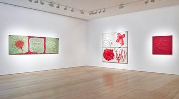 Contemporary art exhibition, Adriana Varejao, Carnivorous at Victoria Miro, Wharf Road, London