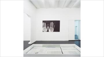 Contemporary art exhibition, Henrik Olesen, Sexuelle Zwischenstadien – Einführung in die Theorie der Homosexualität at Galerie Buchholz, Cologne