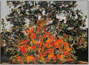 Magnolia by Ugo Schildge contemporary artwork