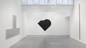 Contemporary art exhibition, Torey Thornton, Subdominium Edges Y Assumed Legalities at Modern Art, London